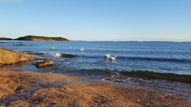 Meriluontoa | Spauna, Kustavi